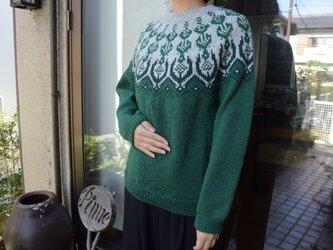 グリーン濃淡セーターの画像