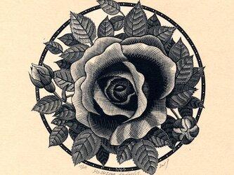 過ぎにし薔薇の名を我は知らずの画像