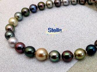 Stella(ステラ)の画像