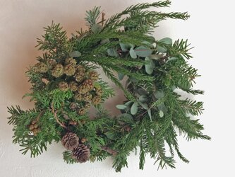 針葉樹のリースの画像