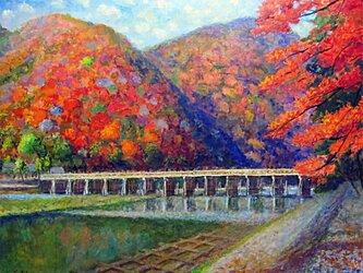 嵐山も秋化粧の画像