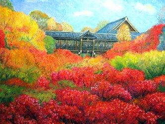 モミジの東福寺の画像