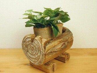 【温泉流木】丸太くり抜きのかわいいミニプランター小物入れ 入れ物 流木インテリアの画像