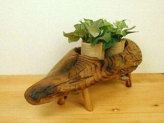 【温泉流木】ウリ坊みたいにかわいい入れ物プランター 小物入れ 流木インテリアの画像