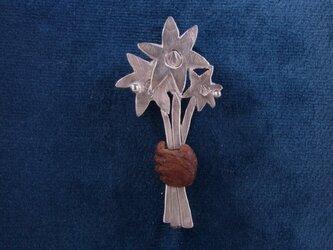 森で摘んだ花(赤ずきん)の画像