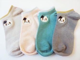 猫靴下 ミャー MIAの画像