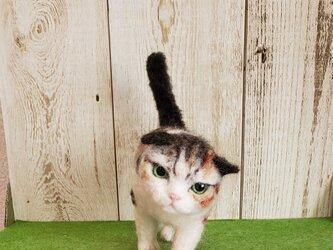 歩いている三毛猫(羊毛フェルト)の画像