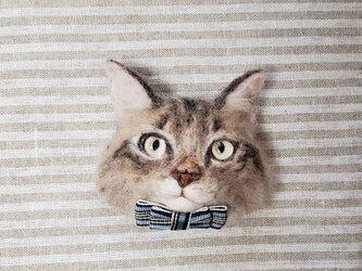 サイベリアン猫顔オーナメント 羊毛フェルトの画像