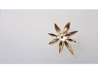 Star Aniseピアスの画像