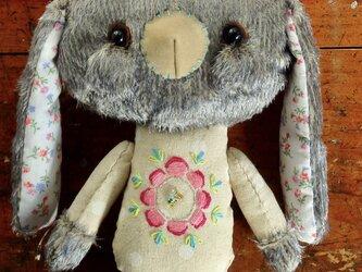 フラワンちゃん(ウサギ)の画像