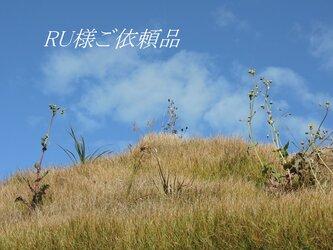 RU様ご依頼品の画像