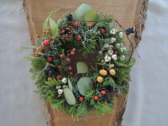 冬の森のクリスマスリースの画像