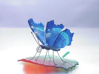 《CZAR1210様オーダー品》ガラスの蝶 ルリタテハ on リーフの画像