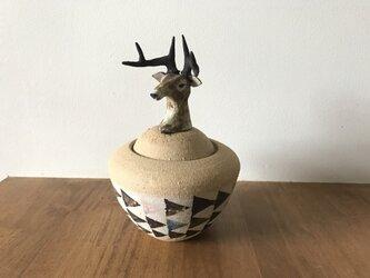 カノプス壺 鹿の画像