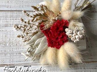 星月猫★「ケイトウとラグラスのクリスマスミニブーケ」ドライフラワー 花束 スワッグの画像