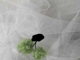 Pea green cherryの画像
