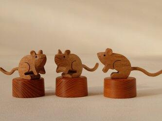 福ネズミ (オーク+ケヤキ)の画像