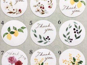 選べる植物サンキューシール 48枚の画像