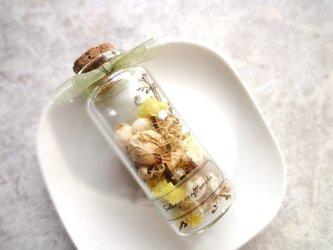 the Little Garden ■ ギフトボックス入り ■黄色いミニバラの庭 エ・クレールの画像