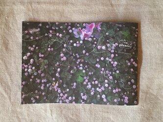 ideallife with plants 〜植物はたのしい。〜 5号「みちくさ、しよう。」の画像