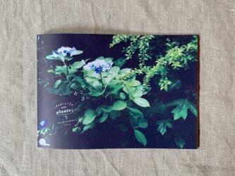 ideallife with plants 〜植物はたのしい。〜 7号「あじさい」の画像