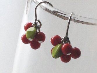 赤い木の実のピアス /ガラスビーズの画像