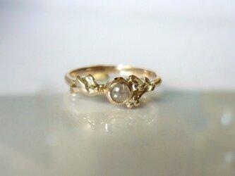 森の小鳥と天然ダイヤの指輪(K10)の画像