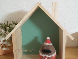 クリスマスコスチューム つぶらな瞳のカモノハシさん 羊毛フェルトの画像