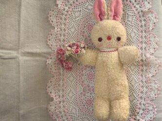 胴長ウサギちゃんの画像