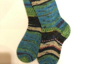 No.230 送料込手編み靴下ナポレオンフィッシュの画像