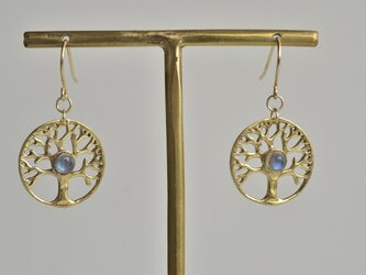 ツリーオブライフ(生命の樹) ラブラドライト ゴールド 天然石ピアスの画像