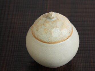 亀の甲のフタの丸型壺の画像
