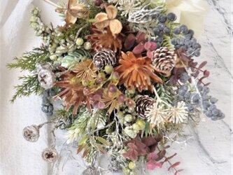 スワッグ 冬木立:木の実 小枝の画像