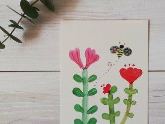 ポストカード2枚セット「花とミツバチ」の画像