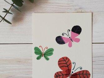 ポストカード2枚セット「蝶々」の画像