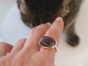 K10[指で育てるペット]スモーキークォーツの画像
