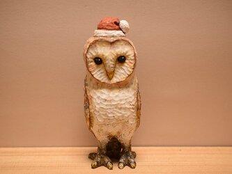 クリスマスのメンフクロウ(売れました。)の画像