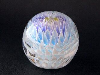 玉菊 -蒼白-の画像