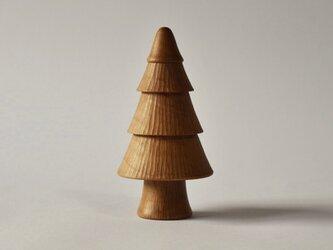 オーディンの樫の木 ( 大・綿帽子 )の画像