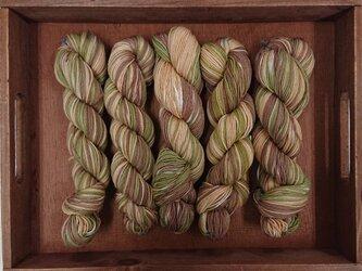 インダスからの贈り物【オリジナル段染め糸】(84)1本の画像