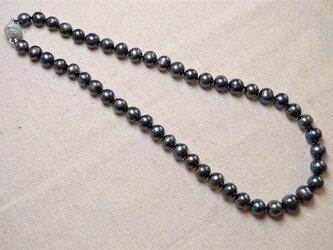 再販 淡水ブラックパール ネックレス の画像