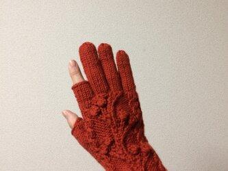 【受注制作】木の実模様手袋メリノウール100%橙色の画像