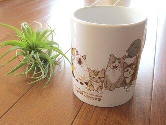 ちび猫マグカップ【送料無料】の画像