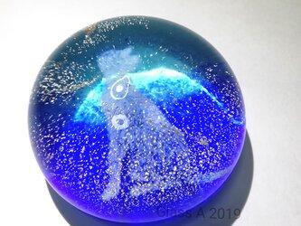 星空猫ペーパーウエイトの画像