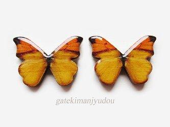 蝶のウッドチタンピアス/橙【イヤリング変更可】の画像