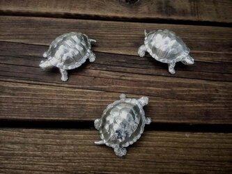 錫の亀の画像