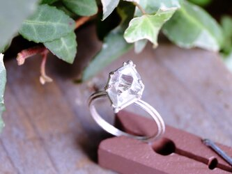 (Thank you!Sold!)光の種 ダイヤモンドクォーツ 原石指飾りの画像