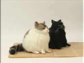 羊毛フェルト 猫 仲良しデブ猫さん ねこ ネコの画像