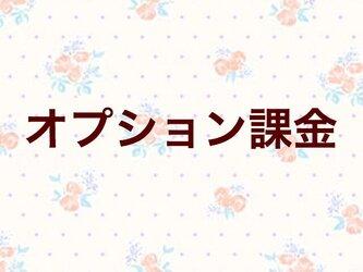 【2800円】オプション追加の画像