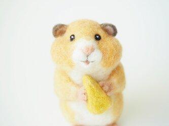 ハムスター(食いしんぼう)の画像